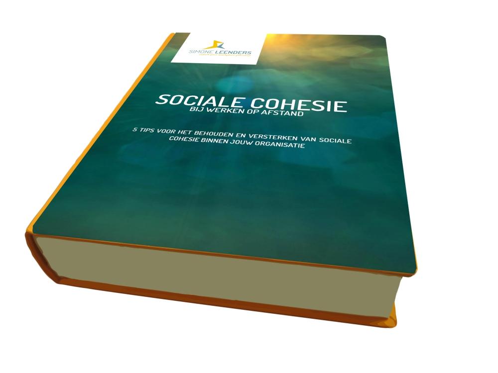 ebook sociale cohesie Simone Leenders